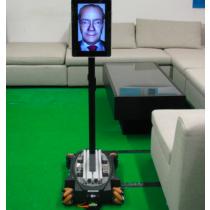 EmoRobot: Telepresence